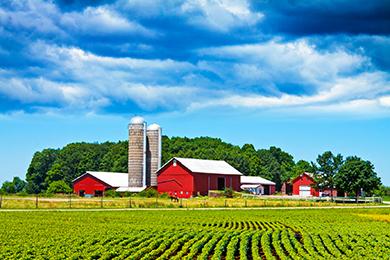 Assurances agricoles